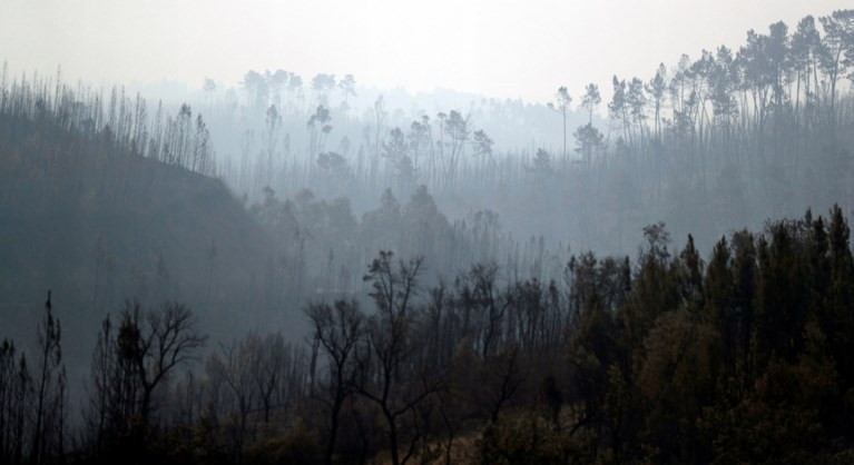 Hevige bosbranden in Centraal-Portugal