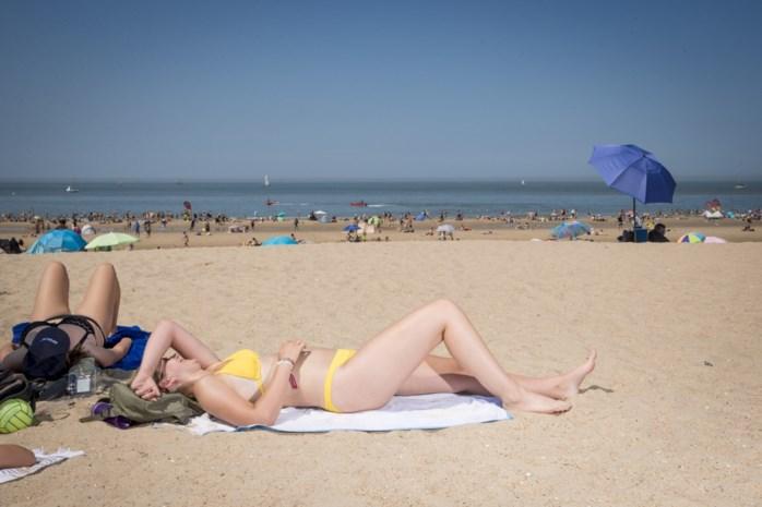 Wat is het warmste moment van de dag? Is de lucht nu ongezond? Alles wat je moet weten over de hittegolf