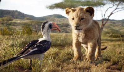 Nieuwe succesfilm van Disney lokt op één week 320.000 Belgen: 'De Leeuwenkoning' zwaait de scepter