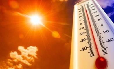 Hageland beleeft de warmste tweede juni ooit