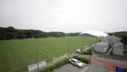 Terug naar Fukushima: hoe de olympische vlam de revival van een nucleair rampgebied moet aanwakkeren