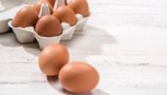 Boerderij van teruggeroepen bio-eieren tijdelijk geblokkeerd