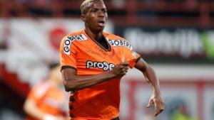 Ook Charleroi vangt het grote geld: Lille betaalt minstens 12 miljoen voor Osimhen