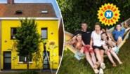 """Wie schuilt achter de zonnebloemen? """"De regel is: zet u op het terras en pak uw tweede pintje zelf"""""""