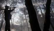 Brandweer krijgt zware brand in de buurt van Athene onder controle