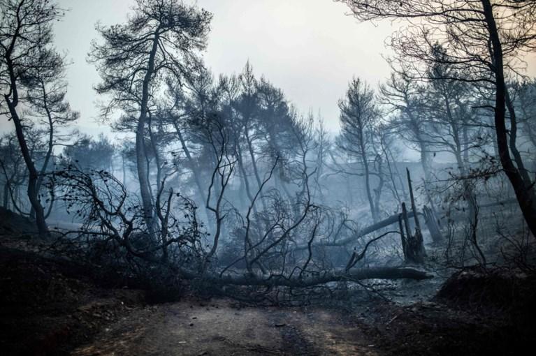 Bosbranden op Griekse eiland zo hevig dat rookpluim zelfs tot in hoofdstad Athene reikt