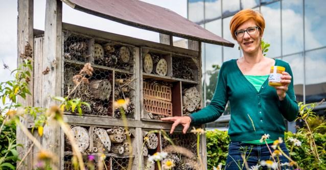 Een koningin als collega: bijenkasten op hoofdkantoor Aquafin