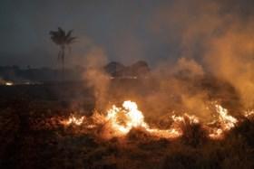 Bolsonaro zet leger in om bosbranden in Amazonewoud te bestrijden, indianenchef wil president weg