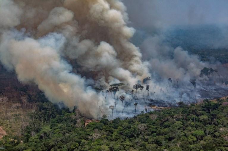 Bosbranden in Amazone erg? In Afrika is het nog veel erger