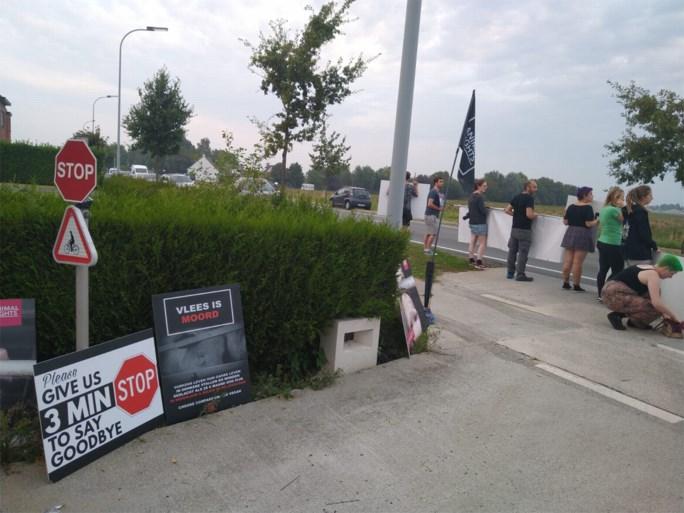 Vier dierenrechtenorganisaties houden samen wake voor varkens aan Tielts slachthuis