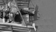 Zo wanhopig was hij: verdronken transmigrant met zelfgemaakt reddingsvest en één zwemvlies uit Noordzee gevist