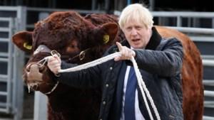 Oppositie zal Johnsons voorstel voor vervroegde verkiezingen niet steunen