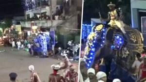 Olifant slaat op hol tijdens festival en vertrappelt minstens 17 omstanders