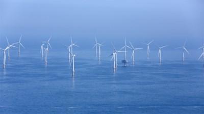 """Zo gigantisch veel windmolens staan nu al voor onze kust: """"En er komen er nog honderden bij"""""""