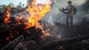 België strijdt mee tegen bosbranden in Amazonegebied