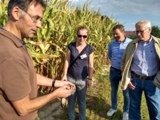 """Boeren oogsten 15 procent meer als ze akker met eigen compost bemesten: """"En het is nog beter voor het klimaat ook"""""""
