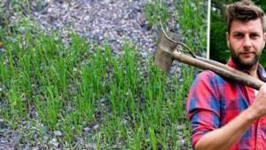 De droge zomer heeft zijn sporen nagelaten: met dit stappenplan kan je je gras redden