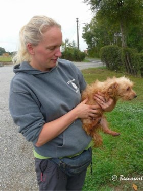 Verwondingen, vlooien en zelfs maden die uit hun rug groeien: 50 zwaar verwaarloosde dieren bevrijd uit kleine chalet