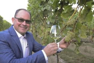 Marino heeft een nieuwe naam voor zijn West-Vlaamse wijn, en daar is een goede reden voor