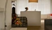 Maar één op de vijf werkt van thuis uit, de helft van de bazen weigert het gewoon