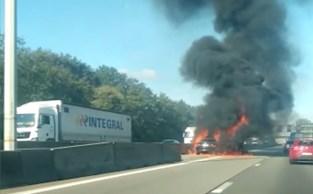 BMW vat plots vlam op snelweg en brandt volledig uit: inzittenden en hun hond kunnen aan vuur ontsnappen