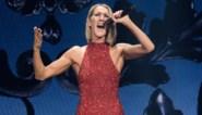 """Céline Dion nog niet toe aan nieuwe relatie: """"Ik doe niet aan daten"""""""