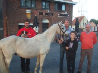 Pony's en jack russells gewikt en gewogen