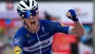 Deceuninck - Quick Step houdt op vraag van Franse bond Cavagna aan de kant in Kampioenschap van Vlaanderen