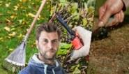 Wat moet je in de herfst doen in de tuin? Bartel Van Riet zet de belangrijkste klusjes op een rijtje