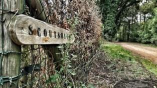 Vrouw verhuist en zadelt nieuwe eigenaars op met tientallen zwerfkatten