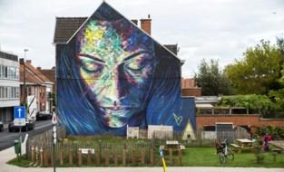 'Slapende Vrouw' in Krottegem is Strafste Street Art van Vlaanderen en Brussel