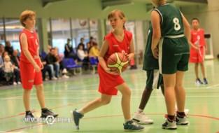 Basketbalclub Assenede start nieuw seizoen