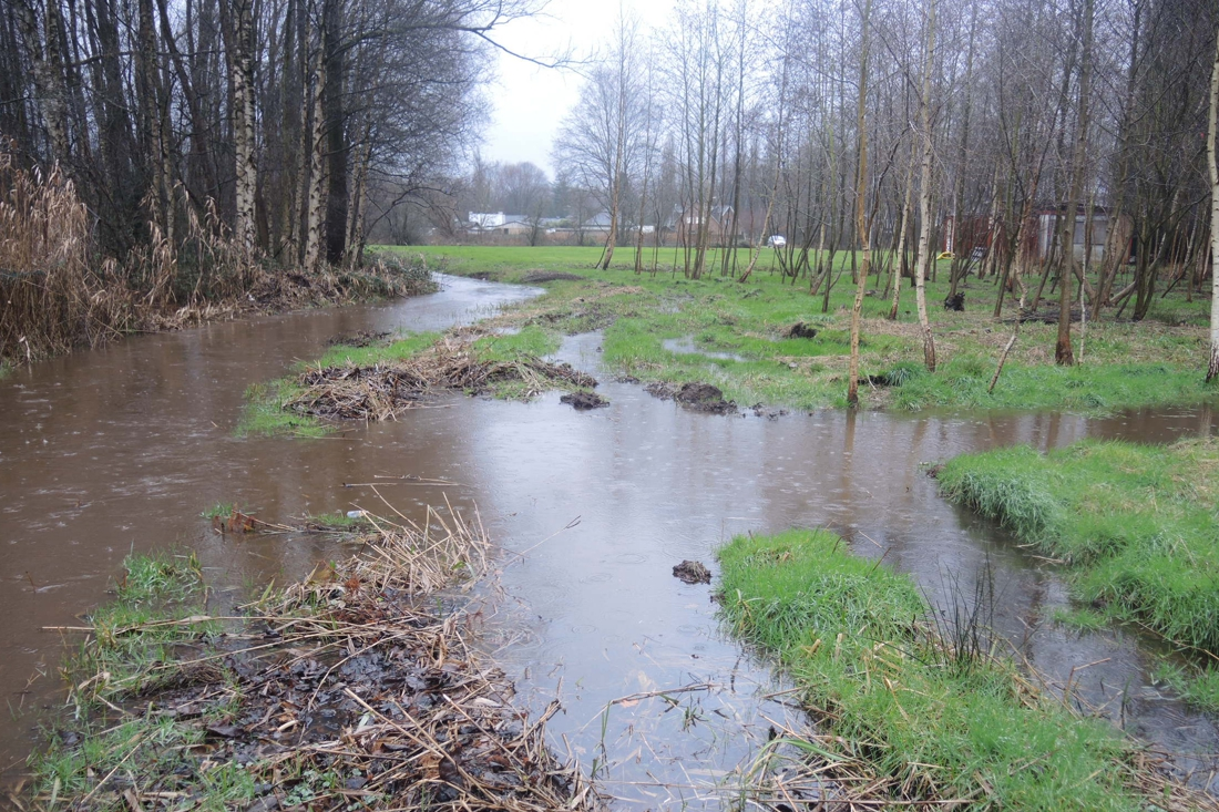"""Klacht tegen elf nieuwe woningen in overstromingsgebied: """"Bewoners zijn bang voor nog meer wateroverlast"""" - Het Nieuwsblad"""