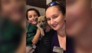 Jonge pitbull sterft nadat hij de twee zoontjes van zijn baasje redt van gifslang