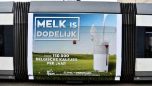 De Lijn zet reclame met slogan 'Melk is dodelijk' op Antwerpse en Gentse trams stop
