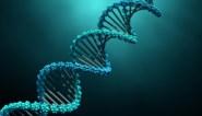 Eerst vijf jaar cel, nu vrijspraak voor verkrachting na DNA-onderzoek
