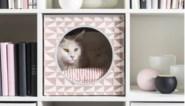 Deze meubels voor huisdieren vloeken niet met je interieur