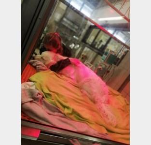"""Begeleidingshond Rubi overlijdt na eten van sluikstort: """"Kijk alsjeblieft uit als je gaat wandelen"""""""
