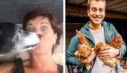 Ook BV's zetten op Werelddierendag hun huisdieren in de bloemetjes