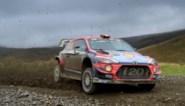 Neuville schuift op naar tweede plaats in Rally van Wales, leider Tänak vergroot voorsprong