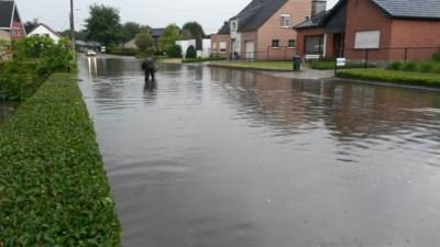 """Al jaren wateroverlast en nu is eindelijk de oorzaak gevonden: """"Vraag mij nog altijd af hoe het daar is geraakt"""""""