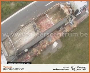 Lading slachtafval verspert A12 in Wilrijk richting Brussel: ernstige verkeershinder