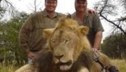 Animal Rights eist verbod op het organiseren van slachtsafari's