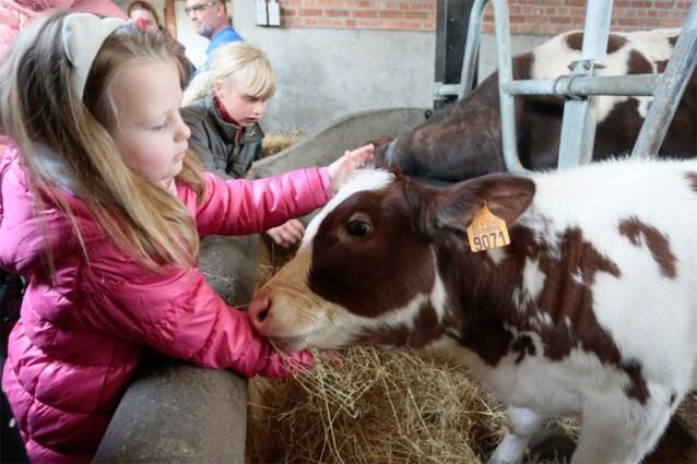 Kinderboerderij Rivierenhof valt in de prijzen