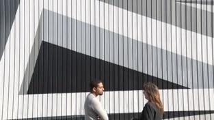 VIDEO. X-Pand in Beringen presenteert grootste 3D muurschildering in het land
