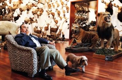 Jager plots zelf opgejaagd wild: bakken kritiek op fraudeur die museum wil vullen met zijn jachttrofeeën