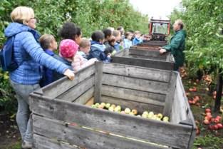 Kinderen trekken mee de boomgaard in