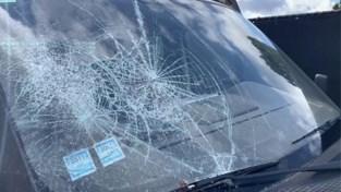 Vandalen vernielen achttien wagens in Houthalen-Helchteren
