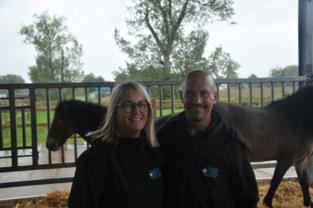 Open Bedrijvendag: paardenmelk proeven in Het Brabanderhof