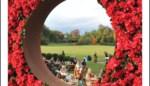 FOTO. Eindelijk daar was ze toen, de zon: Flanders Garden Festival klokt af op 18.000 bezoekers